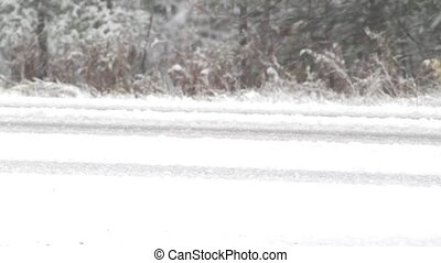 Road during snowstorm - Video of a snow covered road with...