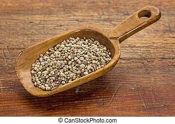 scoop of hemp seeds