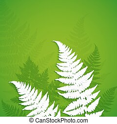 White paper fern leaves on green background - White vector...