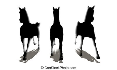 cavalli, Tre
