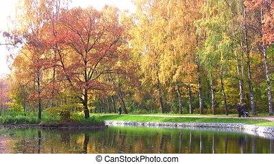 autumn park - Autumn park
