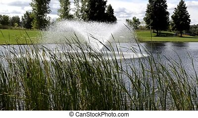 Park pond fountain 410 - Beautiful fountain in the pond of a...