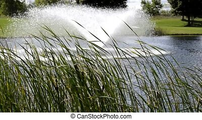 Fountain in the park pond 411 - Beautiful fountain in the...