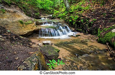 Babbling Brook - Peaceful stream flows through the...