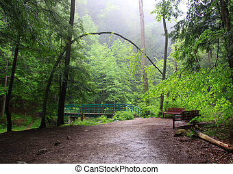 Hocking hills landscape - Misty landscape in Hocking hills...