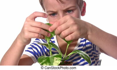 child with plant - Child with plant