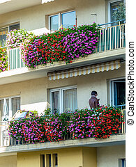 balcony with flowers - balconies with many flowers in a...