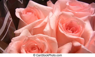 rotating roses - Rotating roses