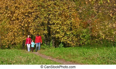 parents with boy walking in autumnal park