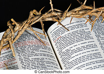 Easter Story - Crown of thorns on an open Bible