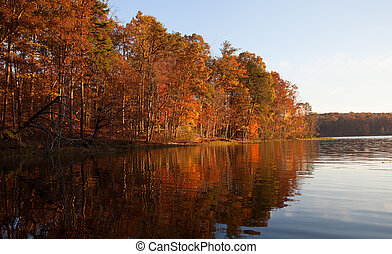 Fall treeline - Line of colorful trees reflecting in the...