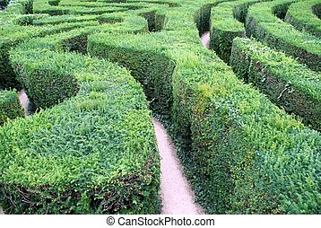 maze - garden art or design