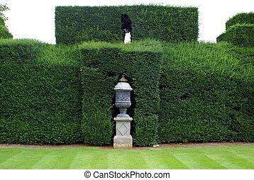 urn., vase., hedge., yew, Topiary,