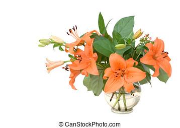 lilies, vase, isoliert  - Lilien in einer Glasvase