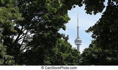 CN Tower frames by trees Wide - CN Tower framed by green...