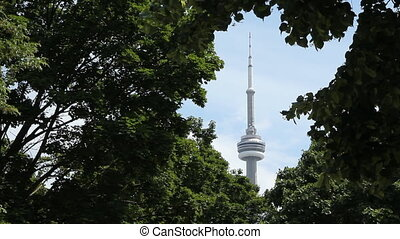 CN Tower framed by trees. - CN Tower framed by green tree...
