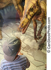 boy and dinosaur in museum