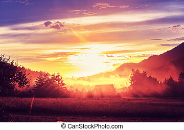 Fog on meadow. Washington - Rural landscapes at sunrise in...