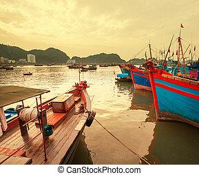 Vietnã, bote