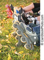 row of roller legs on the grass 2
