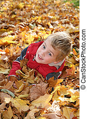 child in maple leaves