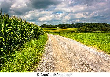 Corn fields along a dirt road in rural Carroll County,...