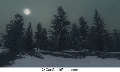 Winter pine wood and full moon