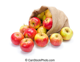 Ripe apples in burlap sack - Fresh red apples spreading out...