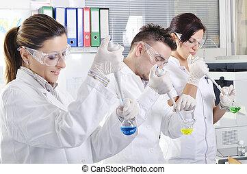 atractivo, joven, Phd, estudiantes, scientists, ,