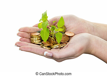 money and plant symbol photo save - hands with money and...