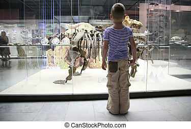 boy and dinosaur`s skeleton in museum