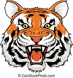 Angry tiger - Vector illustration of angry tiger isolated on...
