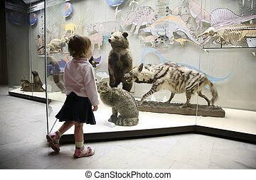 little girl in natural museum