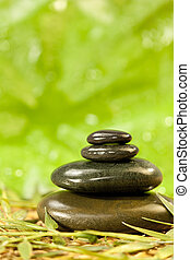 Spa Massage Hot Stones in Green Environment - Spa Massage...