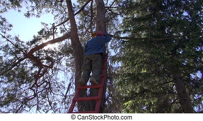 hanging new bird house nesting-box - hammering hanging new...