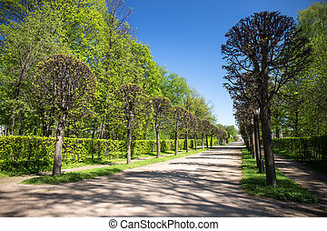 Kuskovo park - The park of Kuskovo was created in 18th...