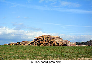 Woodpile on a fresh air waiting for winter