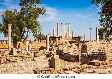 Thuburbo majus, Tunisia a few of the remaining pillars which...