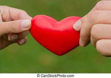 hands holding heart - the hands of a love couple holding a...