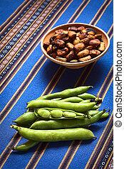 Fresh Raw Fava Beans - Fresh raw fava beans lat Vicia faba,...