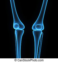 Knee joints