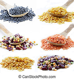 collage of different kinds of beans and lentils (red, black,...