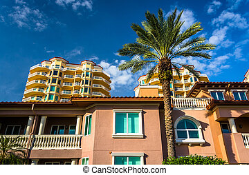 Palm trees, houses and condo towers in Saint Petersburg,...