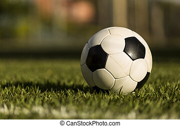 Soccer ball on a grass field. - Soccer ball on a grass...