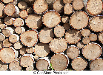 Stack of firewood. May be used as background