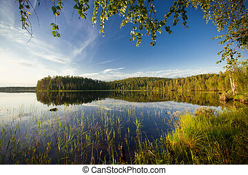 summer scene - summer evening scene at Ruunaa hiking area,...