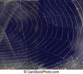 Hintergruende,  spiderweb