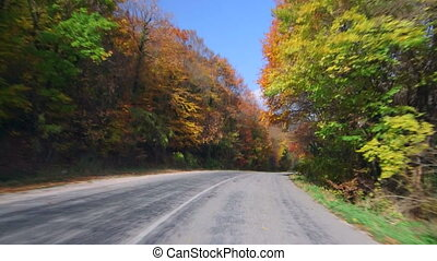 Car driving on winding road through colorful autumn forest