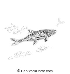 Fish and ephemera as vintage engraved vector