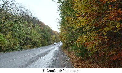 Mountain road through the colorful forest in autumn